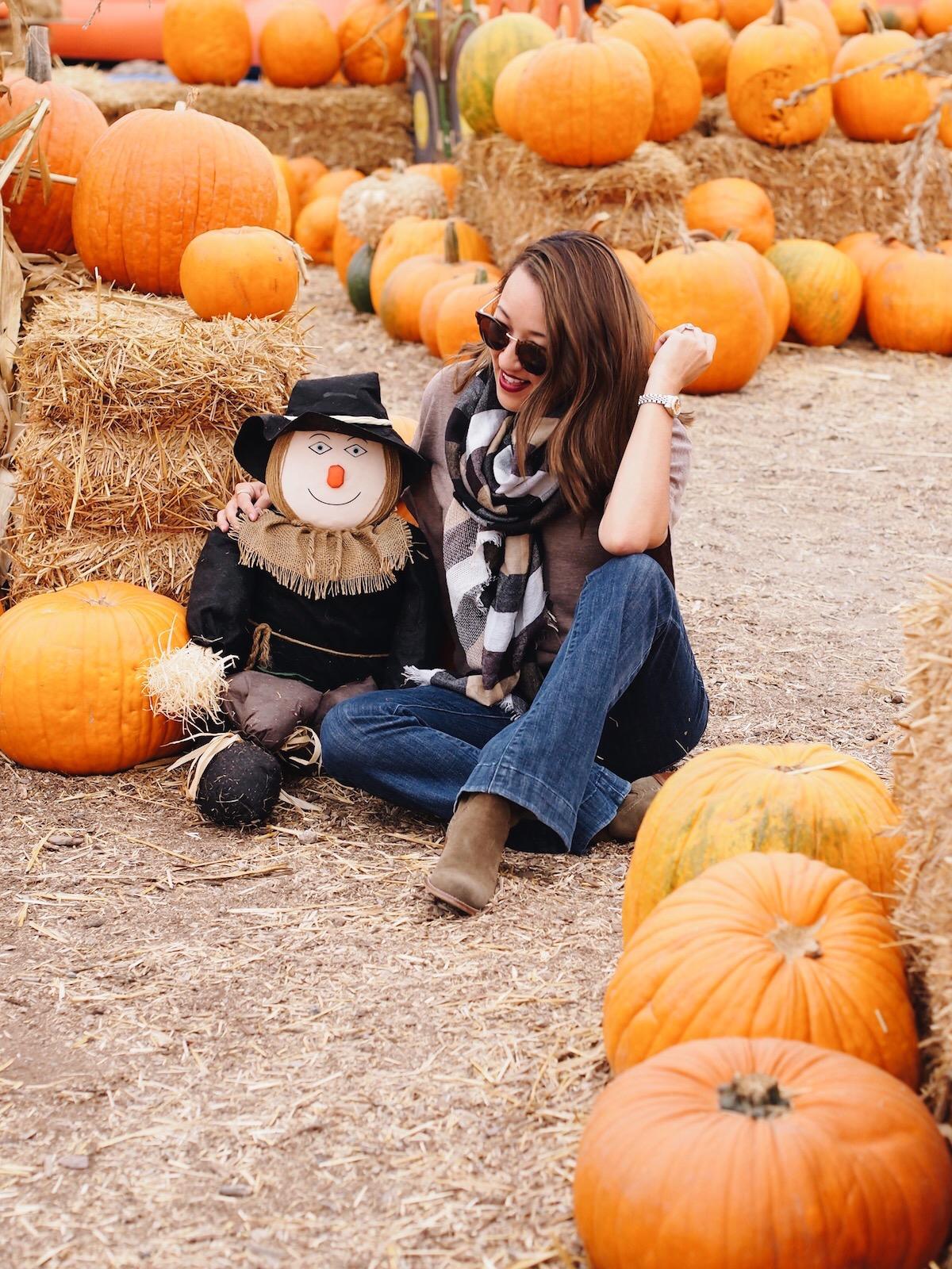 pumpkin-patch-scarecrow-savvynista