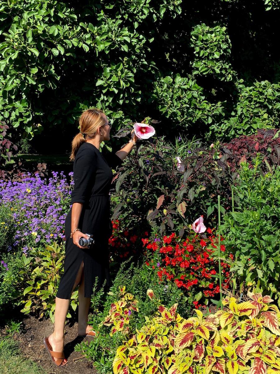 flower-garden-in-longwood-gardens-pa